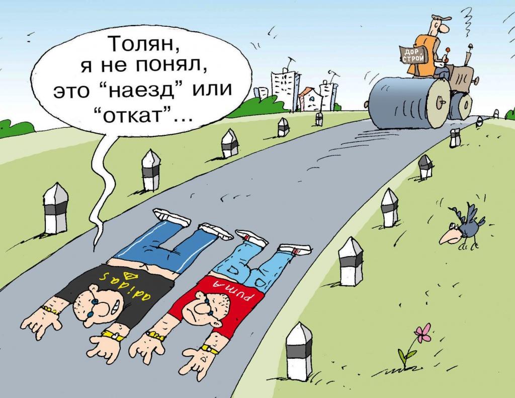 Юморные картинки на тему дураки и дороги