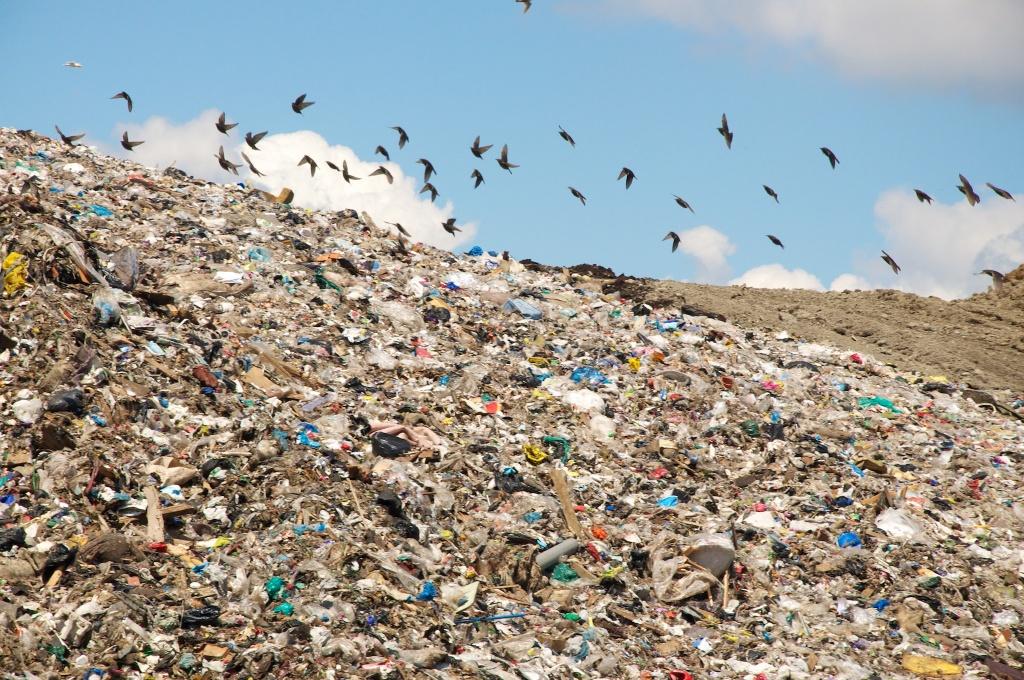 мусор1.jpg